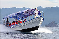 Private Group Water Taxi Puerto Vallarta
