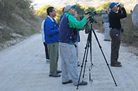 Puerto Vallarta Birdwatching Tour