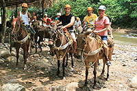 Mule Ride at Cuale Mountain Expedition Puerto Vallarta