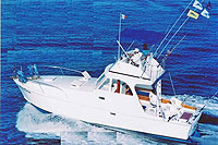 Cheap Fishing Trips in Puerto Vallarta