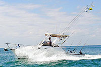Cheap fishing trips in puerto vallarta save here for Nuevo vallarta fishing