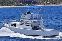36' Custom Fishing Boat - Vallarta