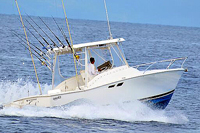 25' Luhrs Fishing Puerto Vallarta