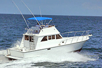 40' Express Boat Fishing Boat - Vallarta