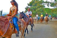 Puerto Vallarta Moonlight Horseback Riding