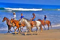 Puerto Vallarta Horseback Beach Riding Excursion