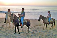 Private Horseback Riding Puerto Vallarta