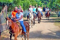 Puerto Vallarta Horseback Riding