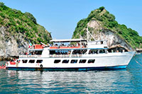 Puerto Vallarta Bay Cruises