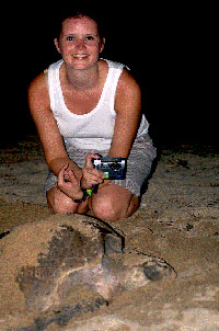 Sea Turtle Release, Puerto Vallarta Tours