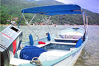 27' Panga with Shade - Yelapa Tour